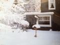 Winter HinterhausAnsicht